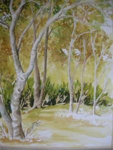 cours-aquarelle-linda-boyte-un-coin-de-bouleaux